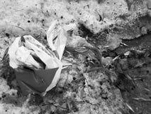 Sch?nes zerknittertes Bauendband, das auf dem Schnee im Winter oder im Fr?hling liegt lizenzfreie stockfotografie