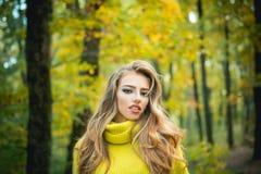 Sch?nheit mit Autumn Leaves auf Fall-Natur-Hintergrund Des im Freien herrliches brunette vorbildliches Mädchen Porträts mit sonni lizenzfreie stockfotografie
