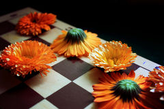 Schaakraad en bloemen Royalty-vrije Stock Foto's