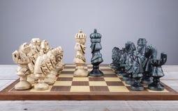 Schaakraad met stukken inzameling aangebrachte orde en onder ogen gezien koningen royalty-vrije stock afbeelding