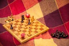 Schaakstukken. Spelschaak in het park in twee. Stock Afbeeldingen