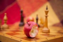 Schaakstukken. Spelschaak in het park in twee. Stock Fotografie