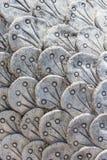 Schaal van Naga, Texturen Stock Fotografie