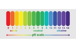 Schaal van ph waarde voor zure en alkalische oplossingen, Stock Afbeelding