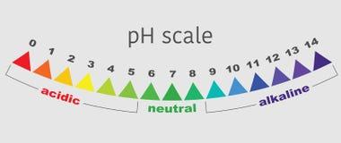 Schaal van ph waarde voor zure en alkalische oplossingen, geïsoleerde vector Royalty-vrije Stock Foto