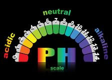 Schaal van ph waarde voor zure en alkalische oplossingen, infographic zuur-basissaldo Royalty-vrije Stock Foto