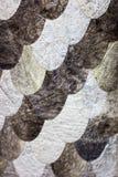 Schaalornament van echte vissenhuid die wordt gemaakt Dichte omhooggaand van de vissenstof in D royalty-vrije stock foto's