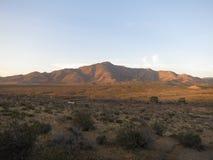 Schaar die, Zuidelijk Californië kruisen Stock Foto's