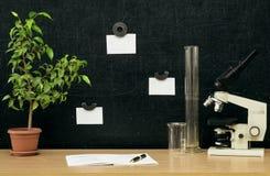 schaar en potloden op de achtergrond van kraftpapier-document Terug naar het Concept van de School Stock Afbeelding