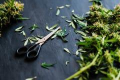 Schaar in orde makende marihuana stock foto's