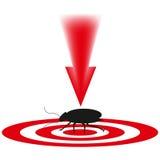 Schabe ein gefährliches Insekt Stockfotografie