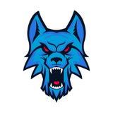 Schablone des Logos mit verärgertem Wolfkopf Emblem für Sportteam MA Lizenzfreies Stockfoto