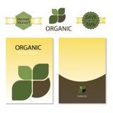 Schablone für Geschäftsgestaltungsarbeiten nave Broschüre organisch und Aufkleber Vektor lizenzfreie abbildung