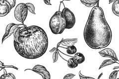 Schablone für Küchendesign Muster mit Früchten und Beeren Stockfotos