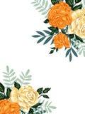 Schablone für Design von Karten und von Einladungen mit Weinleseblumensträußen von Blumen Stockbilder
