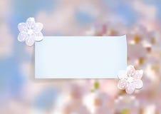 Schablone mit abstrakter Kirschblüte Stockfotografie
