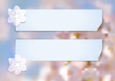 Schablone mit abstrakter Kirschblüte Stockfotos