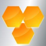 Schablone-Seite-Plan-Broschüre-Hexagon-Form Lizenzfreies Stockbild