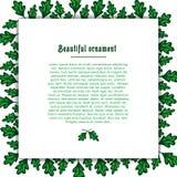 Schablonengrußkarte mit einem Rahmen der grünen Eiche Lizenzfreies Stockfoto