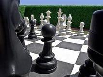 Schach im Garten Stockbilder