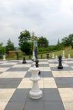 Schach im Park Stockbilder