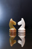 Schach-Pferde auf Dunkelheit Stockfotos