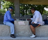 Schach-Spieler am Pavillon Lizenzfreie Stockfotografie