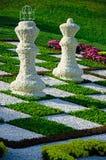 Schach von Chrysanthemen 2 Lizenzfreie Stockfotos