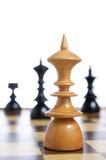 Schach-Vorstand mit Abbildungen Stockbild