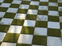 Schachbrettgarten Stockfoto