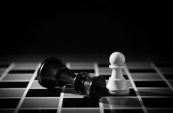 Schachfigur Stockbild
