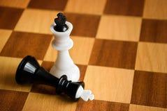Schachkönige an Bord Lizenzfreies Stockbild