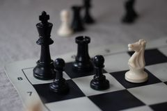 Schachkamerad mit Ritter, Niederlage! lizenzfreie stockfotografie