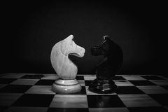 Schachpferd Lizenzfreie Stockfotos