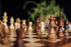 Schachspiel auf dem Schachbrett mit selektivem Fokus Lizenzfreie Stockbilder