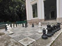 Schachspiel - Schachspiel in einem Park lizenzfreies stockfoto