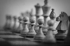 Schachspielauszug Lizenzfreie Stockfotografie