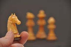Schachstück des weißen Ritters Stockbild