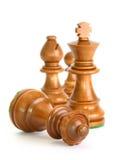 Schachstücke Lizenzfreie Stockbilder