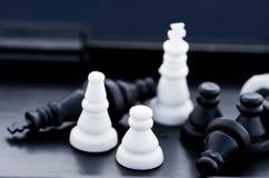 Schachstücke in einem Kasten Lizenzfreie Stockfotografie
