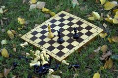 Schachvorstand auf dem Gras Lizenzfreies Stockbild