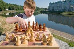 schack Royaltyfri Bild