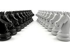 Schack för svart riddare och schack för vit riddare konfronterar sig Arkivbilder