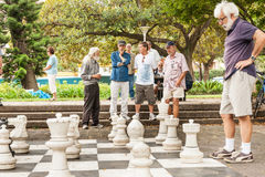 Schack i parkera royaltyfria bilder
