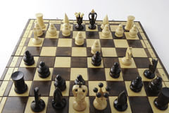 schackbegrepp Royaltyfri Bild