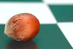 schackbräde Royaltyfri Foto