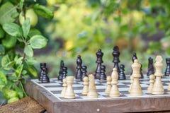Schackbräde med schackstycken på skrivbordet med filialer av äppletre Fotografering för Bildbyråer