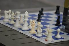 Schackbrädet i parkerar royaltyfria bilder