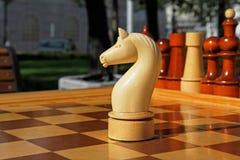 Schackdiagram av hästen Royaltyfri Foto