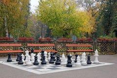 Schackdiagram parkerar in Royaltyfria Bilder